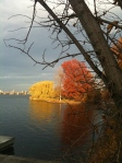 Fall along the Charles River Esplanade