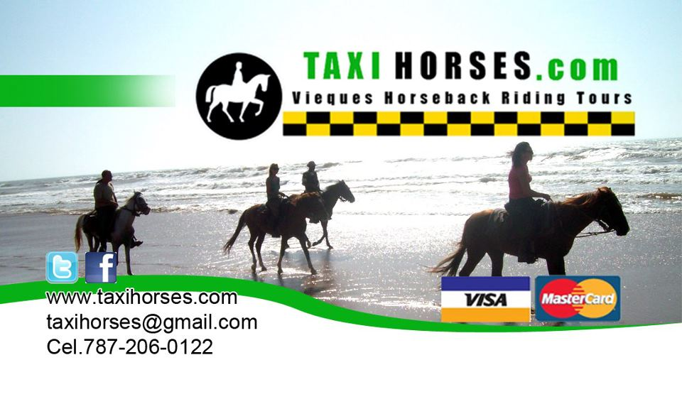 advertising sign for Taxi Horses  Vieqies Puerto Rico