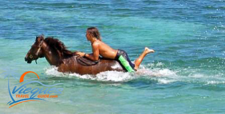 Young man riding horse in ocean in Vieques Puerto Rico
