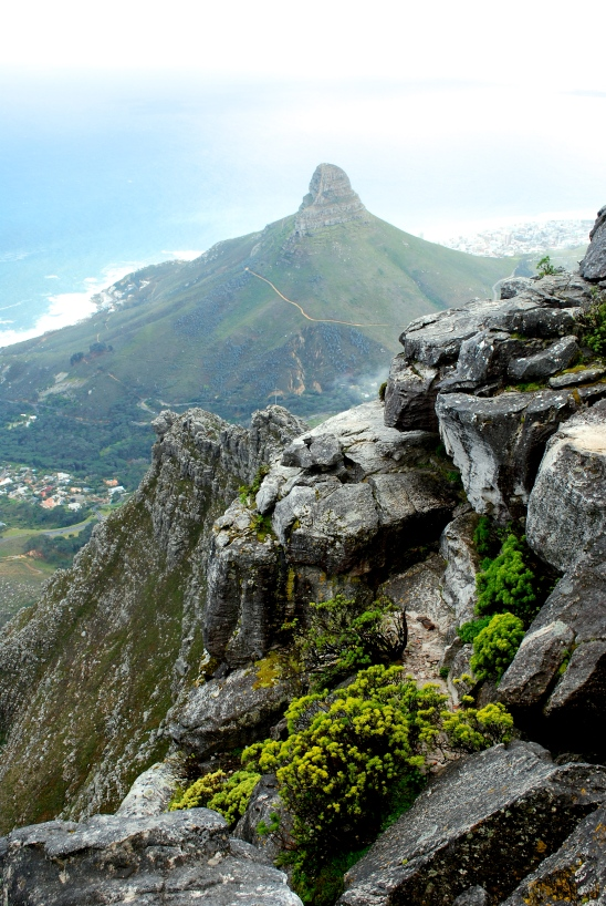 View of Lion's Head beyond Table Mountain in Cape Town, South Africa