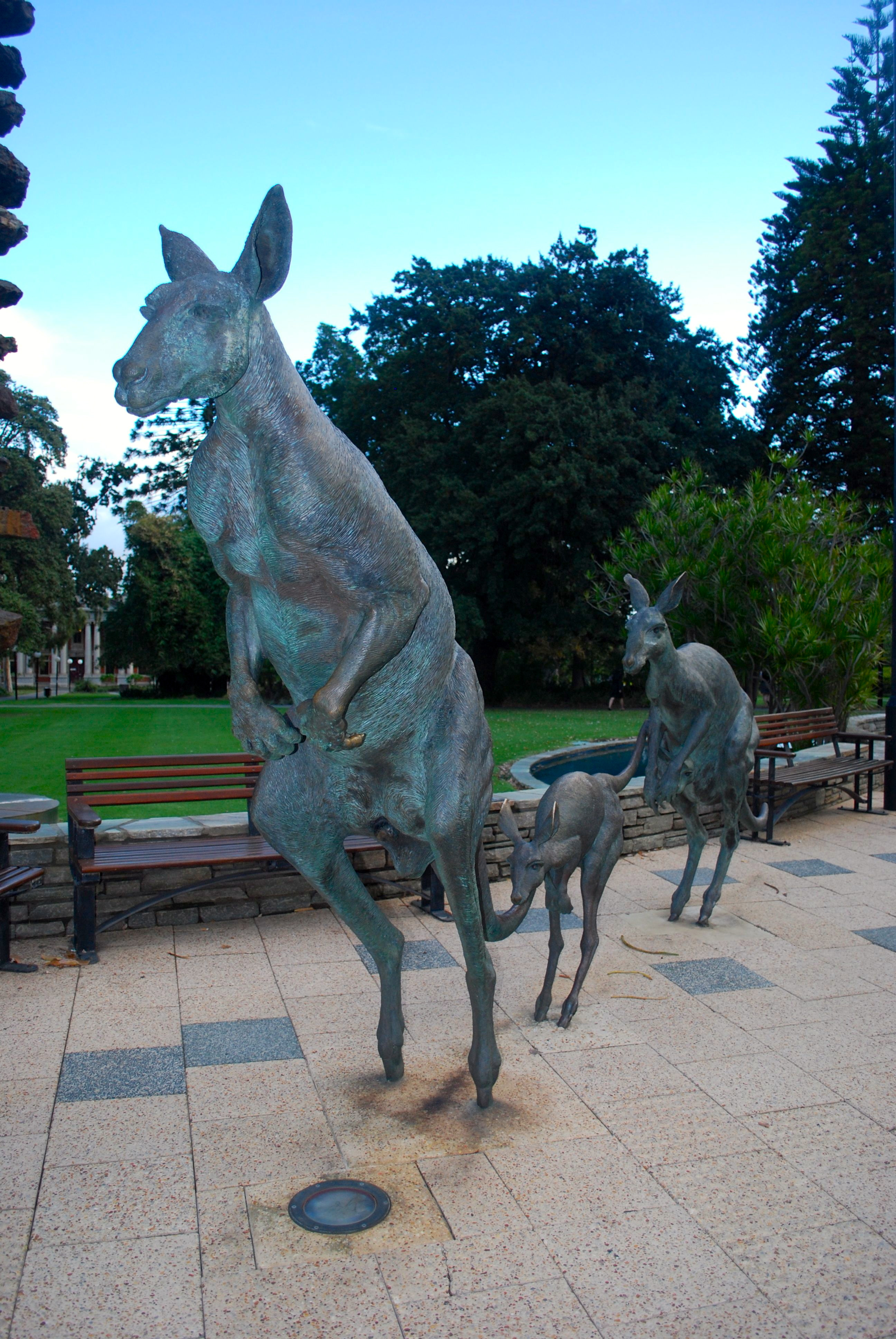 Kangaroo statues in Perth, Australia