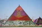 A petunia pyramid in the Dubai Miracle Garden