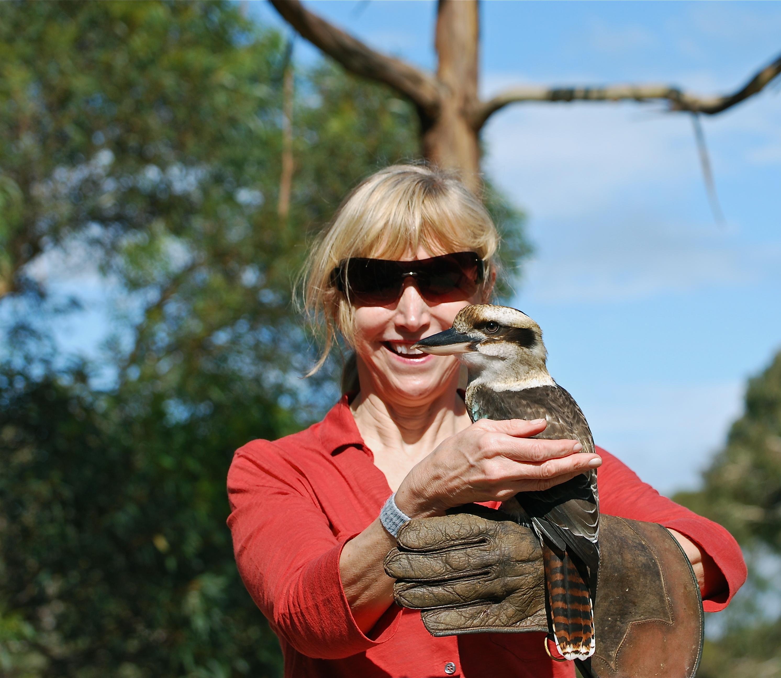 Blonde woman with barn owl on Kangaroo Island, Australia