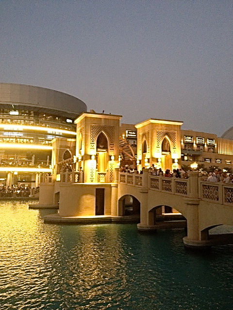 Bridge at Dubai Mall
