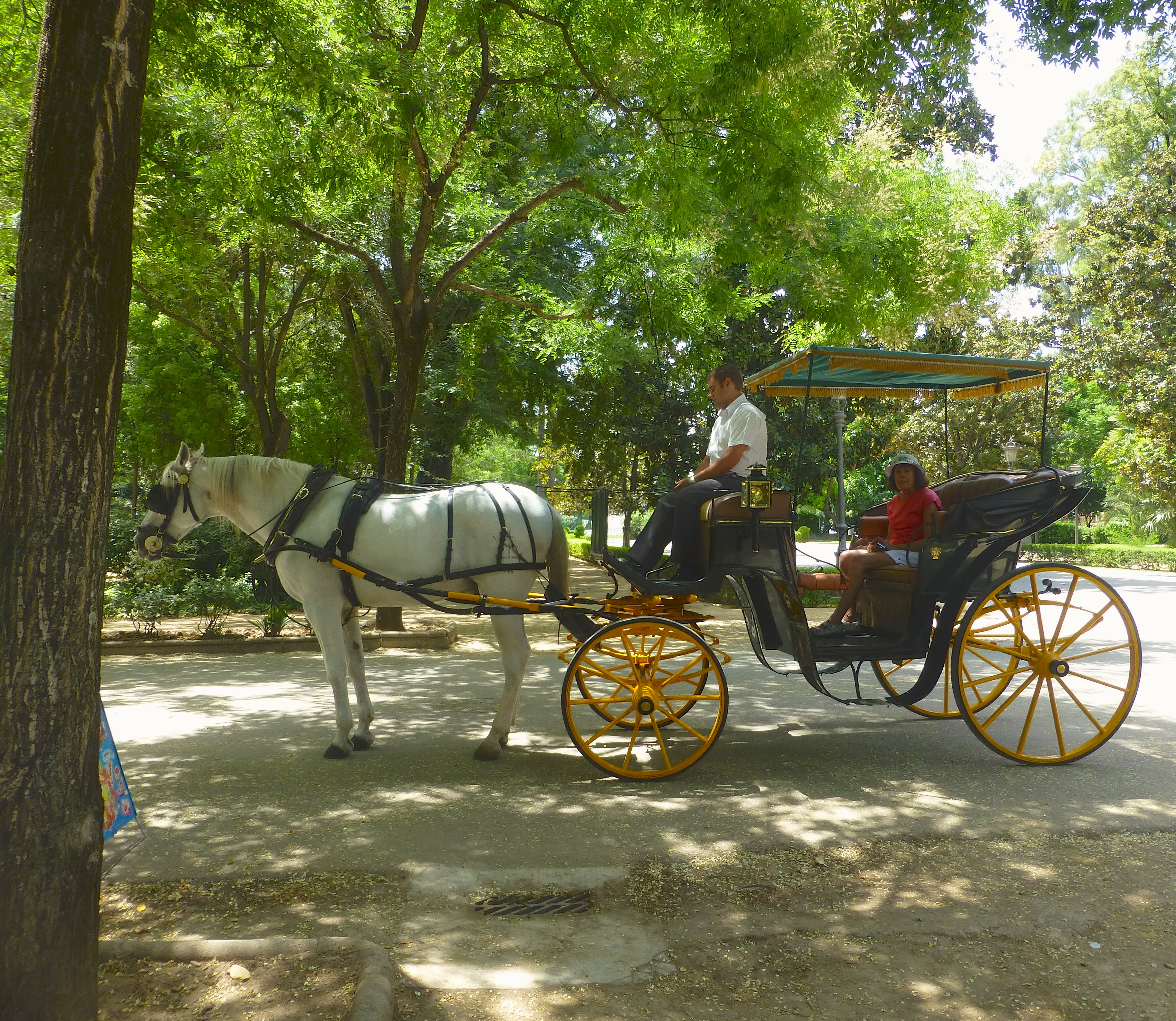 Two women in a horse drawn carriage in Seville Spain