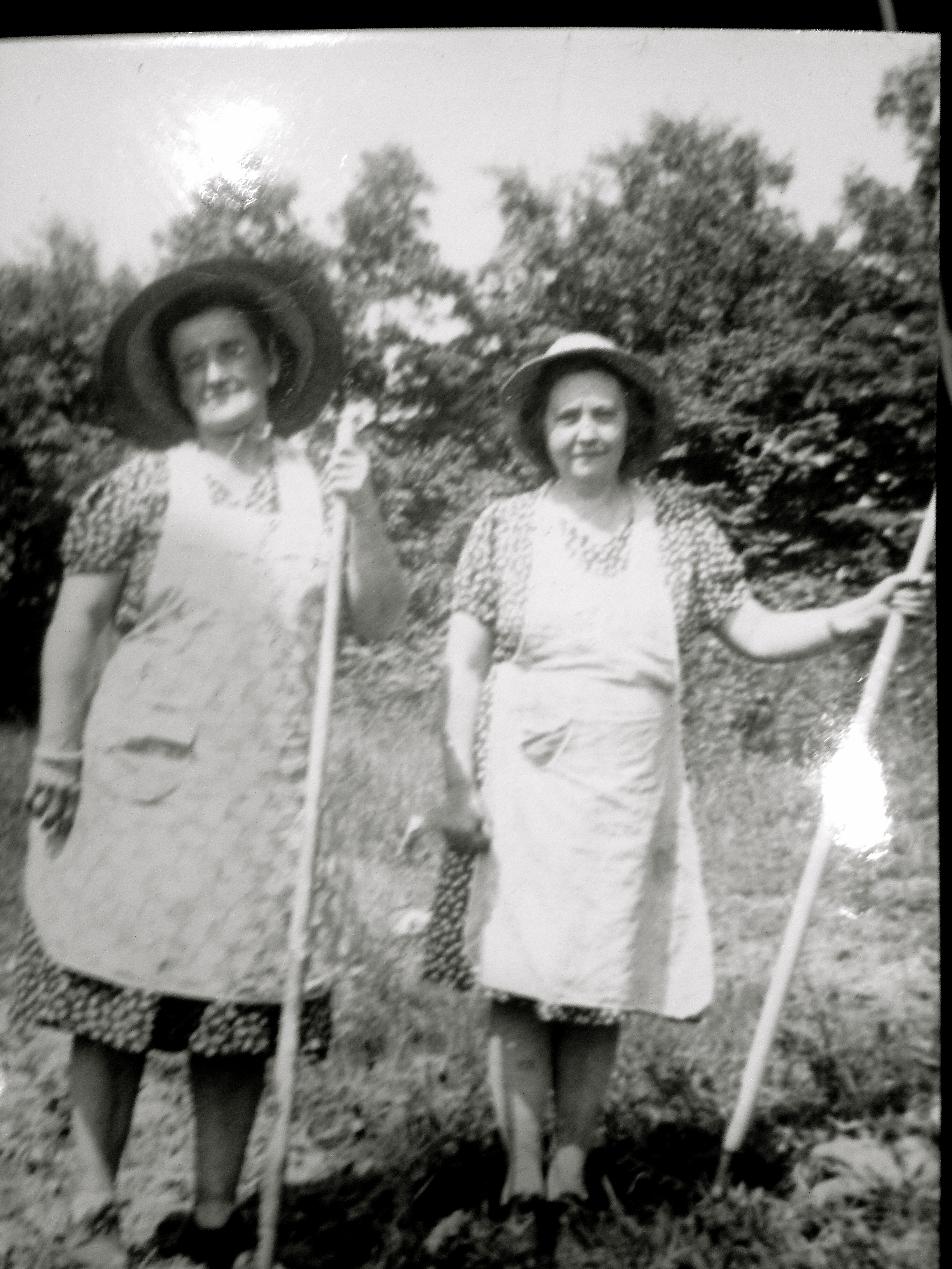 Two old American women on a farm
