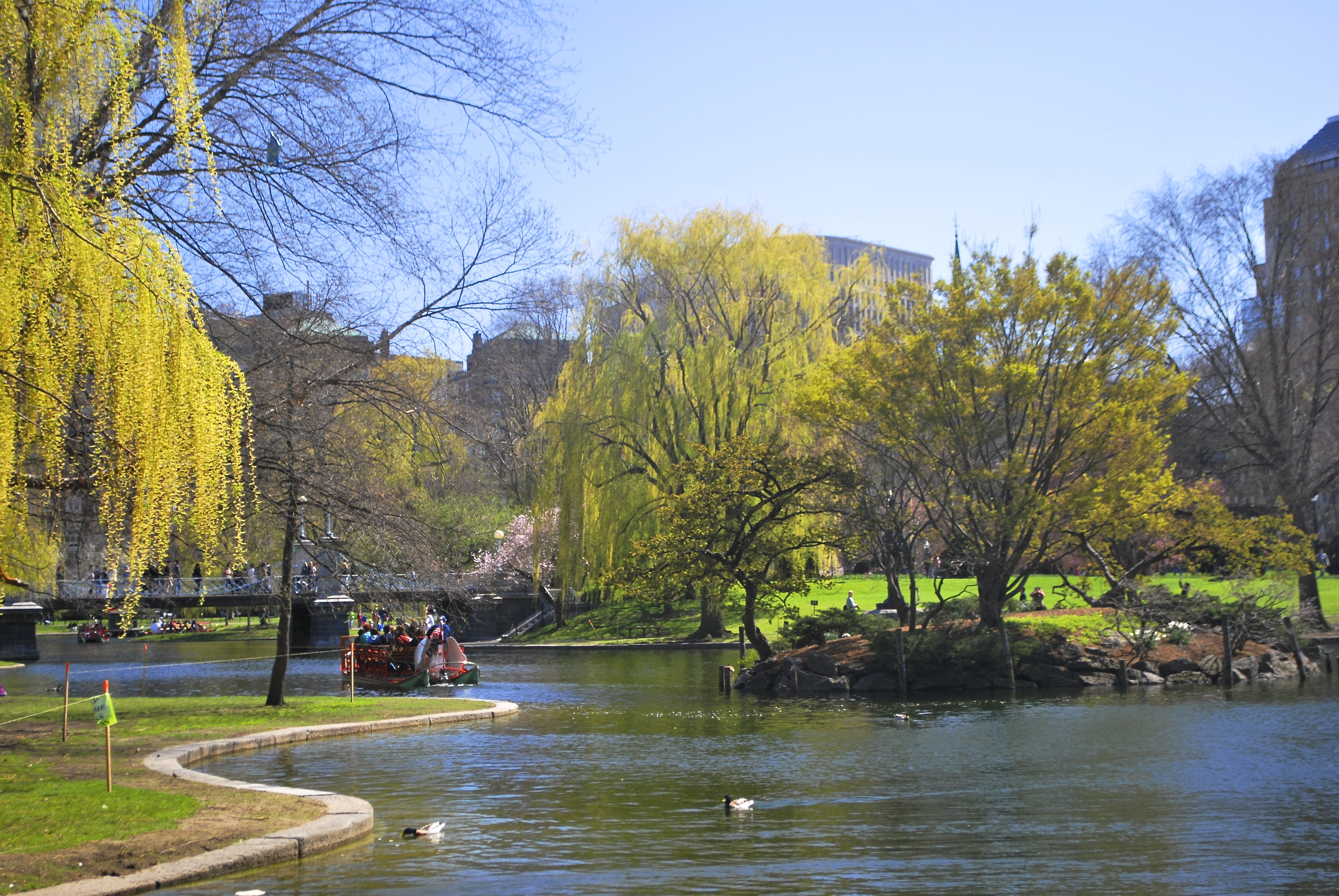 Boston Massachusetts Public Garden