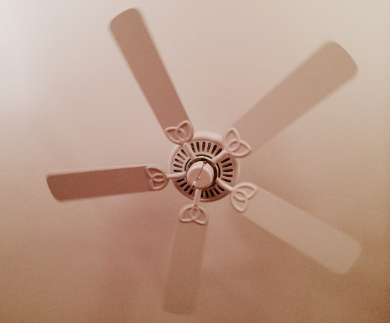 Bedroom ceiling with fan in Florida