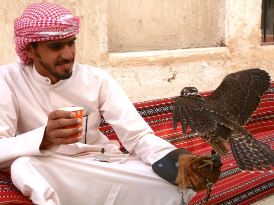 Man and a falcon in Doha, Qatar