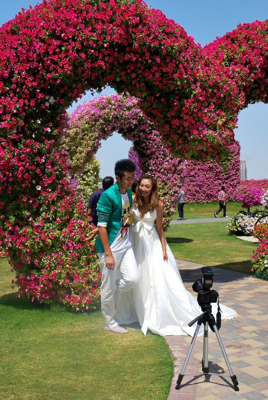 Bride and groom in Dubai Miracle Garden
