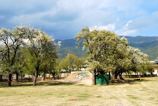 Second King of Bhutan's archery range