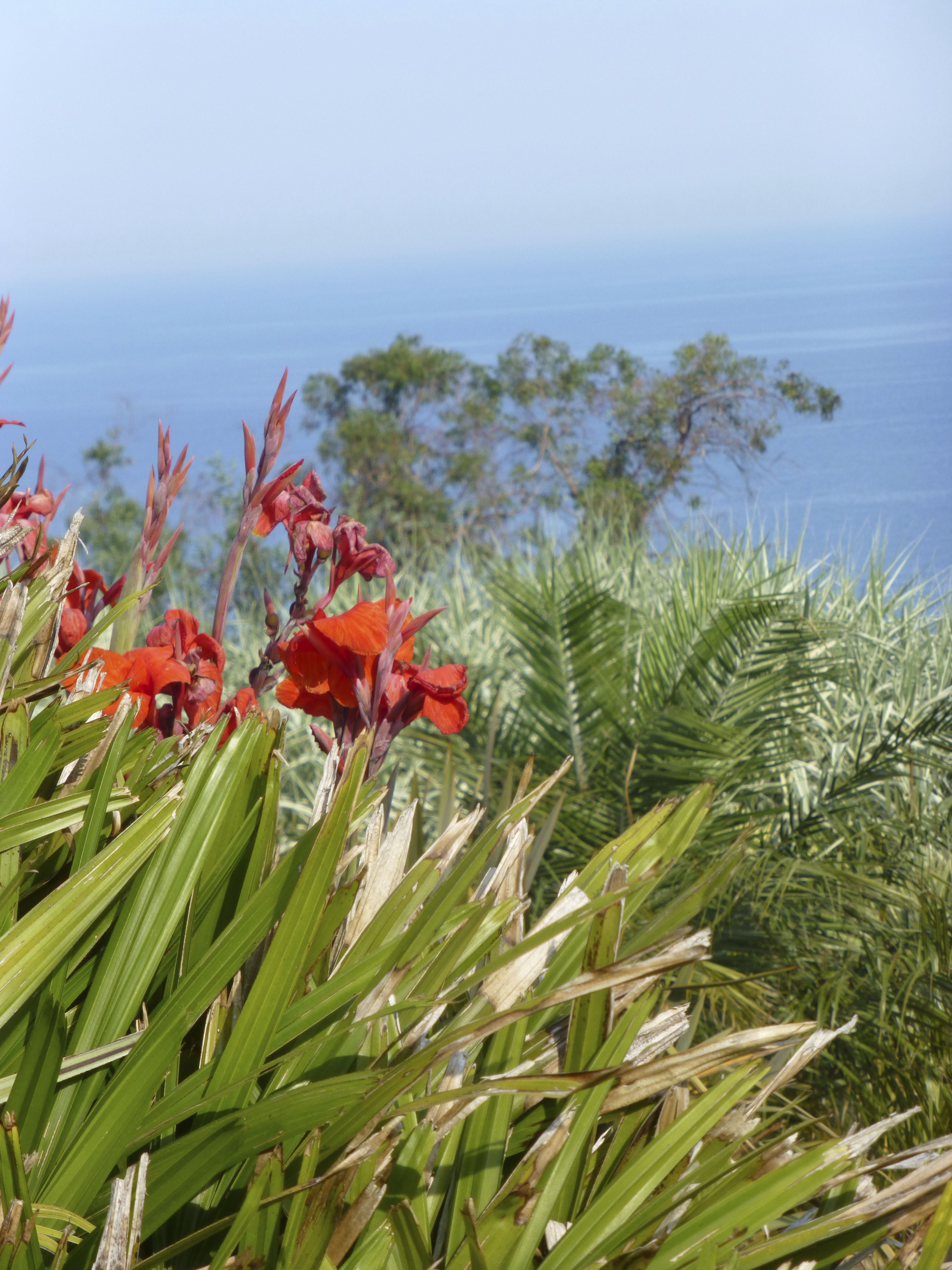 CAP ROIG BOTANICAL GARDEN, Spain